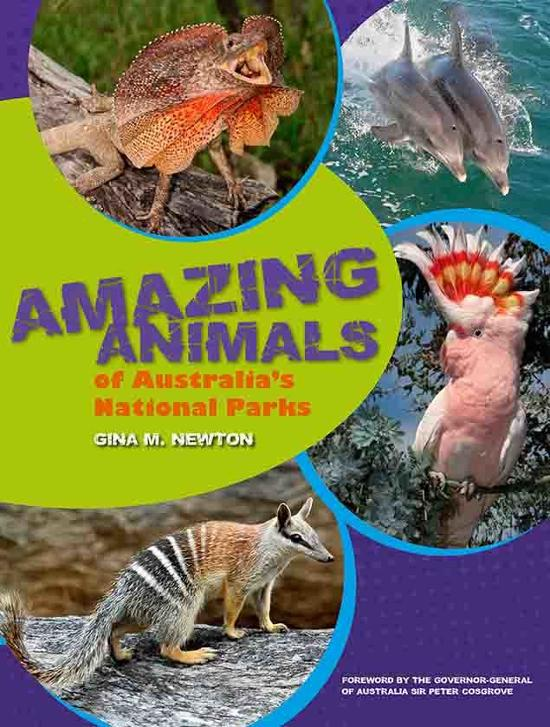 amazing-animals