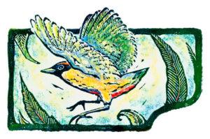narelle-bird